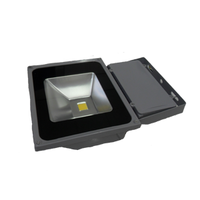 Светодиодный прожектор 70 Вт. PRO Series